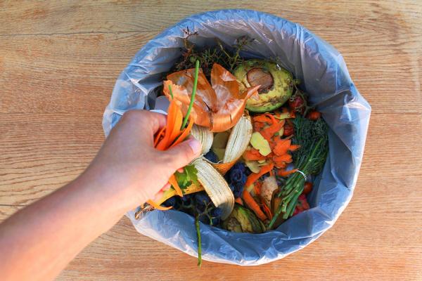 Пищевые отходы - ценнейший корм для червей. Не выкидывайте его прочь