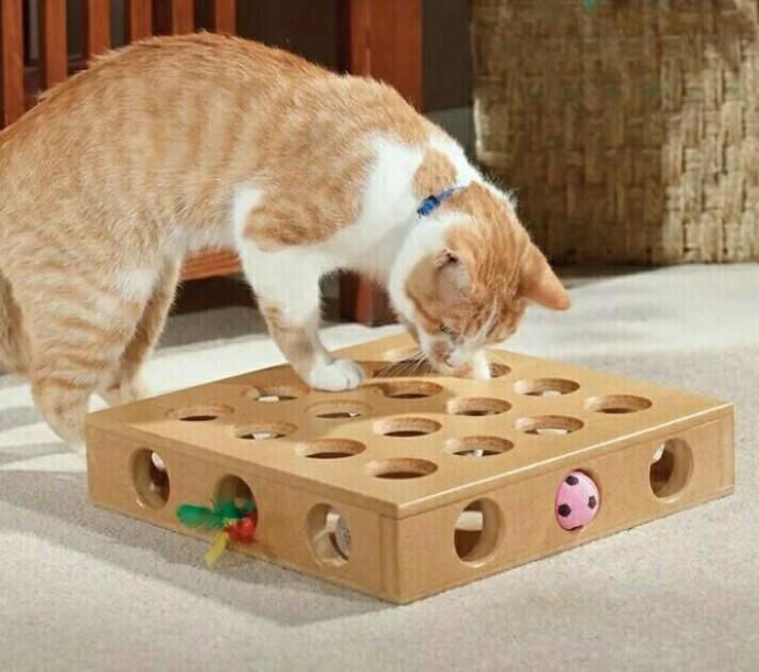 Интересные поделки для счастья кошек