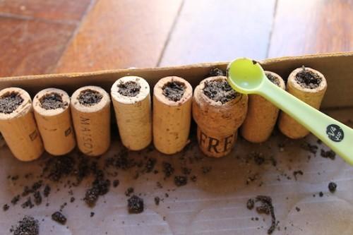 Как сделать мини-сад на холодильнике