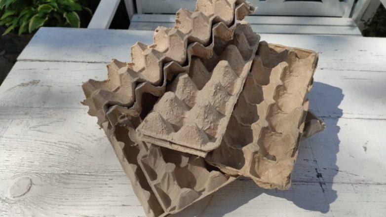 Креативное применение лотков из-под яиц